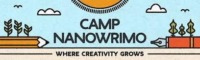 Image result for nano camp