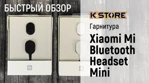 Быстрый обзор гарнитуры <b>Xiaomi Bluetooth</b> Mini Black - YouTube
