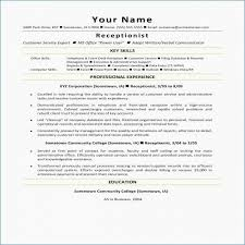 Download New Writing A Professional Resume Technical Writer Resume
