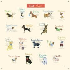 Dog Chart Dog Chart Canvas Wall Decal