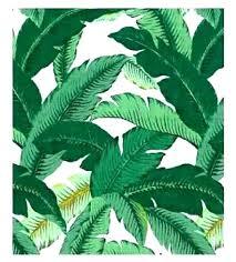palm leaf rugs banana rug outdoor new glamorous area