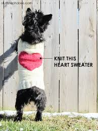 Free Knitted Dog Sweater Patterns Mesmerizing Knitted Dog Sweaters To Keep Your Pooch Warm