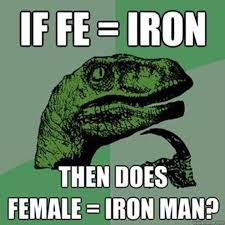VH-If-FE-Iron-Then-Does-Female-Is-Iron-Man.jpeg via Relatably.com