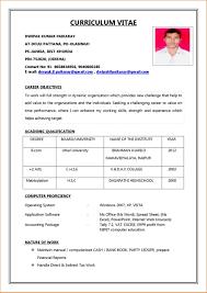 Job Pdf Biodata Application Biodata Sample For Teacher Job Letter