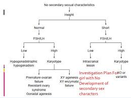 Flow Chart On Mahatma Gandhi Flow Charts For Gynaecological Conditions