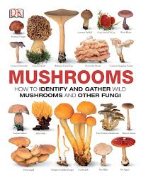 Mushrooms The Complete Mushroom Guide Amazon Co Uk Dk