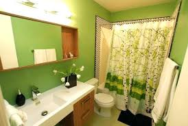 modern guest bathroom design. Modern Guest Bathroom Ideas Popular  Design With Green .