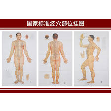 Us 11 3 3 Pieces Set Standard Meridian Acupoint Acupuncture Chart Standard Chart Physical Wall Map The Human Body Chart Meridian Points In Massage