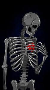 broken heart hd wallpaper skeleton bone
