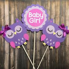 Baby Girl Owl Themed Baby Shower  Home Decorating Interior Owl Baby Shower Decor