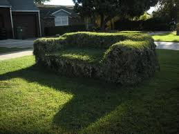 Grass Couch Grass Couch Mar Vista Mom