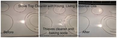 Thieves Oil Dilution Happiest Mom On The Blog Spring Cleaning With Young Living