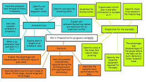 Birth Plan Guidelines Describe The Process Of Fertilisation And Conception Ppt Download