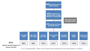 Texas Intestate Distribution Chart Guardant Health Inc Ipo Investment Prospectus S 1