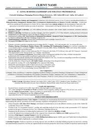 C Level Resume Samples Epic C Level Resume Examples Free Career