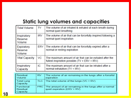 Lung Capacity Chart By Age Lung Volumes In Copd