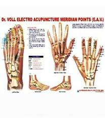 Details About Acupuncture Meridian Points Chart E A V
