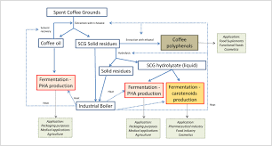 Biotechnological Conversion Of Spent Coffee Grounds Into