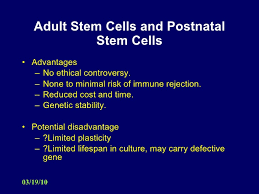 stem cell research umbilical cord stem cells 14