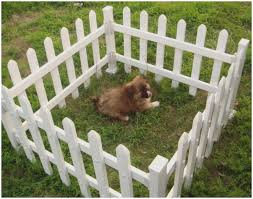 small decorative garden fences best of small temporary dog fence peiranos fences best temporary dog