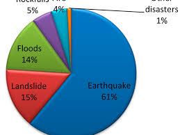 Disaster Management In Community Health Nursing Nursing
