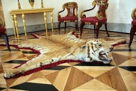 tiger skin rug ideas or book faux with head lovely antique for tiger skin rug