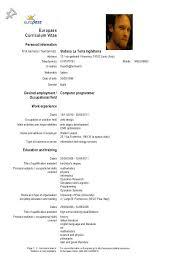 Resume Language Skills Resume Language Skill Level Cv Skills Curriculum Vitae Courtnews Info