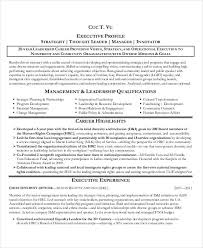 functional executive resume 20 best executive resume templates pdf doc free premium