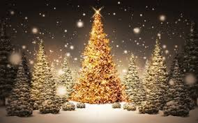 free christmas tree wallpaper.  Wallpaper 3 Christmas Wallpapers Free Tree In The Forest Full Of LightsPng To Wallpaper W
