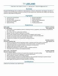 Social Media Resume Example Social Media Manager Resume Fresh Media Resume Examples Examples Of