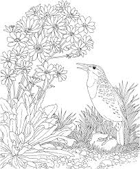 Small Picture Georgia State Coloring Pages Archives gobel coloring page