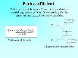 4 path coefficient