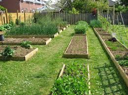 Vegetable garden design ideas backyard