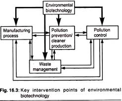 essay on environmental biotechnology by considering all these issues biotechnology be regarded as a driving force for integrated environmental protection by environmental bioremediation