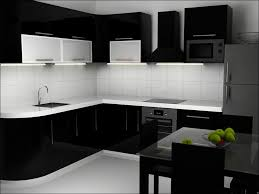 modern black kitchen cabinets. Perfect Black Modern Kitchen Cabinets A