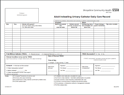 Printable Urine Output Chart Foley Catheter Care Record Printable Medical Forms