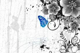 colorful butterfly wallpapers. Brilliant Colorful Colorful Butterfly Wallpaper In Wallpapers