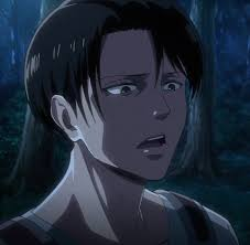 Pin by Alexandria Hinds on Attack on Titan   Levi ackerman, Attack ...