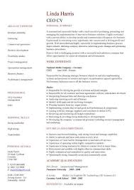 Ceo Cv Sample Setting Strategy And Vision Policy Making