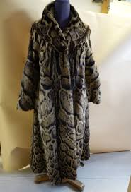 a coat made of clouded leopard skin poaching for illegal trade of skin is one of the main threats to clouded leopard