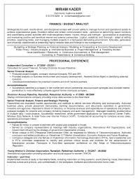 Treasury Analyst Resume Template