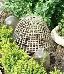 garden cloches bamboo cloches