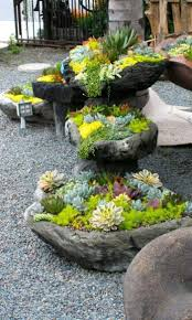 Best 25+ Succulent rock garden ideas on Pinterest | Outdoor cactus garden,  Rockery garden and Succulents garden