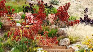 Small Picture Water Wise Garden Designs Water Wise Gardening What Are All These