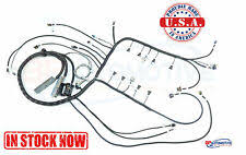 ls1 wiring harness 1997 2006 dbc ls1 standalone wiring harness t56 or non electric trans