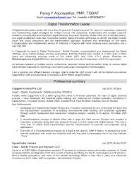 team leader cv examples resume of a digital transformation leader