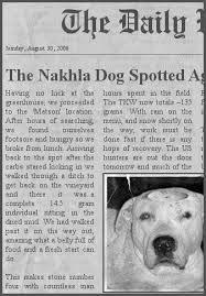 「Nakhla meteorite」の画像検索結果