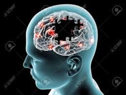 「パーキンソン病と変性疾患」の画像検索結果