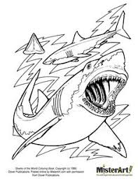 Small Picture Coloring Pages of a Shark Sharks Coloring Pages Pinterest