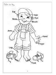 Small Picture witch worksheets for preschool Human Body Coloring Pages For